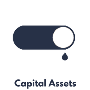 iWorQ Capital Asset Management Software